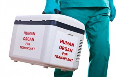 Why Organ Transplants Are Not Always Successful