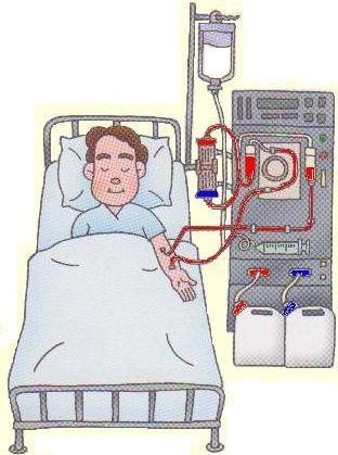 Let's Undergo PYRO-ENERGEN Therapy before Dialysis, Part II