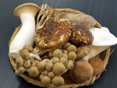 Can Mushrooms Prevent Cancer Diseases?